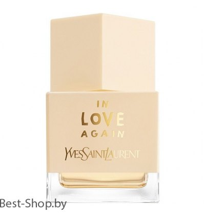 YSL In Love Again